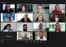 Captura de tela da reunião virtual da Comissão das metas do CNJ